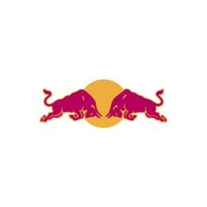 Stierkampf